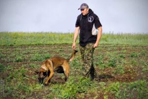 Дмитрий Кузнецов, Dogsa, школа дрессировки собак